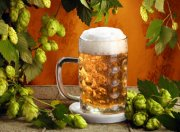 О пивоваренном заводе «Алутон» и других промышленных предприятиях