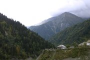 Может ли Южная Осетия стать центром лесопереработки в регионе?